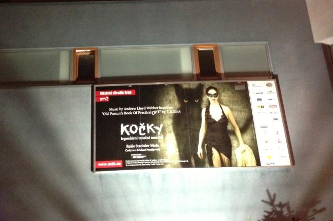 """Billboard for """"Cats"""" in Brno"""