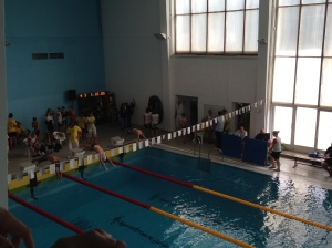 Honza's Swimming Competition