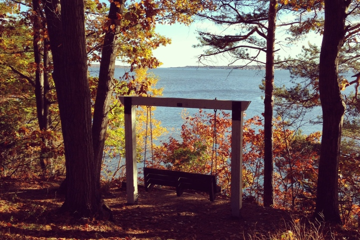 My Favorite Spot on Mackworth Island