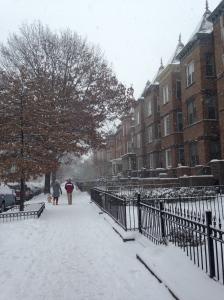 Snowy DC