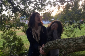 Laughing in Trees