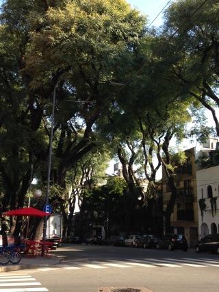 Palermo Hollywood