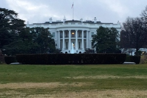White House Trump